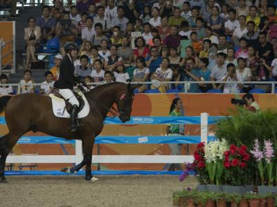 Show Jumper Leads New Zealand Team on Day Seven